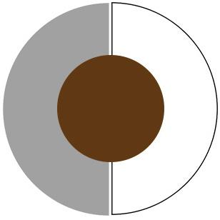 make-dark-brown-pop